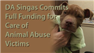 District Attorney Singas Commits Full Funding for the Care of Animal Abuse Victims